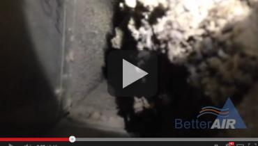 Better Air - main trunk line duct cleaning #3